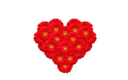 Heart of flowers Royalty Free Stock Photos