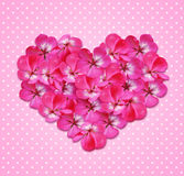 Heart with flowers Stock Photography