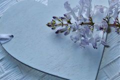 Heart and flowers in shades of mauve and pale blue royalty free stock photos