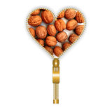Heart form full of walnuts Stock Photography