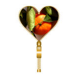 Heart form with one tangerine inside Royalty Free Stock Photography