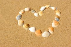Heart frame made of sea shells Stock Image