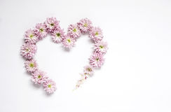 Heart frame wreath pattern with flowers, pink flower buds, Stock Images