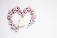 Heart frame wreath pattern with flowers, pink flower buds, Stock Image