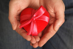 Heart in a gift Stock Images