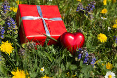Heart and gift on a spring meadow Royalty Free Stock Images
