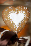 Heart gingerbread Stock Photography