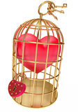 Heart in a golden cage Stock Photography