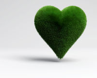 Heart grass. A saint valentine heart grass for ecologic love stock illustration