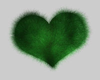 Heart - grass Royalty Free Stock Photography