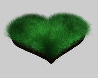 Heart - grass Stock Photography