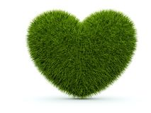 Heart from grass Stock Images