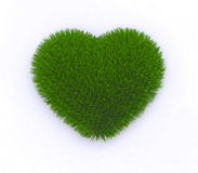 Heart of grass. 3d illustration Royalty Free Stock Photo