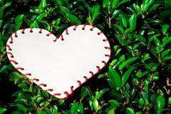 Heart on grass Stock Photo
