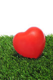 Heart on the grass Stock Photo