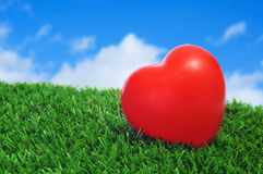 Heart on the grass Royalty Free Stock Photos