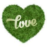 Heart grass Stock Photo