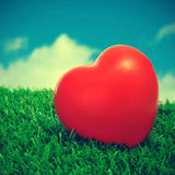 Heart on the grass Stock Photography