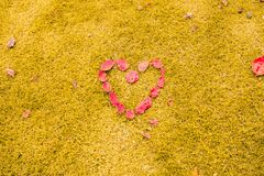 Heart in the Grass. Romantic concept. Romantic pink heart formed by leaves on the yellow grass. Romantic concept on sunny day royalty free stock photos