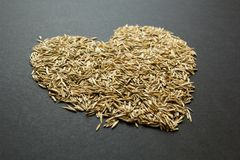 Heart from grass seeds on a black background stock images