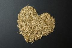 Heart from grass seeds on a black background.  stock image