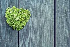Heart on a gray background of the fence. Green heart of flowers on a background of a wooden fence Royalty Free Stock Image