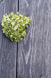 Heart on a gray background of the fence. Green heart of flowers on a background of a wooden fence Royalty Free Stock Photography