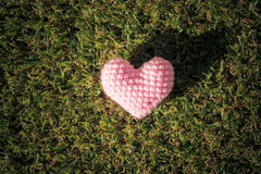 Heart on green grass background Stock Photos