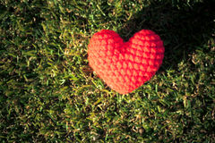 Heart on green grass background Stock Photography