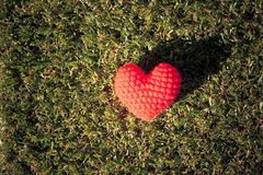 Heart on green grass background Royalty Free Stock Images