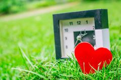 Heart on the green grass. Royalty Free Stock Image