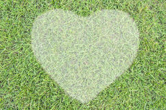 Heart of green grass Royalty Free Stock Photography