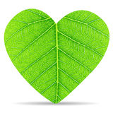 Heart green leave. Texture and background Royalty Free Stock Photos