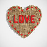 Heart of gunny Royalty Free Stock Photo