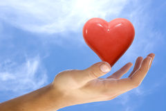 Heart in a hand Royalty Free Stock Photos