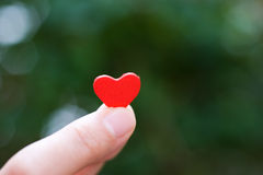 Heart in the hand Stock Photo