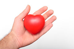 Heart in a hand Stock Photo