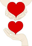 Heart on hand. Heart on the hands -  illustration Stock Photo