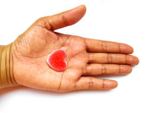 Heart in hand. Concept love and sharing Stock Photos