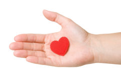 Heart in the hand Royalty Free Stock Photo