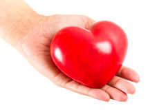 Heart in hand as love symbol. Heart in hand as love and health symbol over white Stock Image