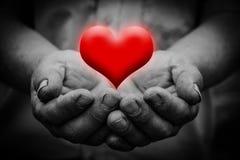 Heart in hand Stock Photo