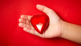 Heart in the hand. Isolated on red background stock image