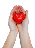 Heart in hand. Isolated on white Stock Images