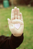 Heart in hand. Pink heart in open hand royalty free stock photo