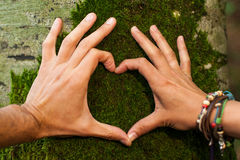 Heart hand on treeby man and woman Stock Photos