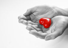 Heart in hands. Conceptual image. Love, care, health themes Stock Images