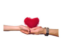 Heart in hands. Isolated, clipping path for photoshop, with path, for designer Stock Photo