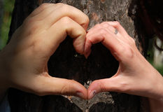 Heart from hands Royalty Free Stock Photography