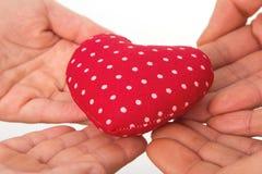 Heart in hands Stock Photos